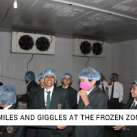 6.	 SMILES AND GIGGLES AT THE FROZEN ZONE