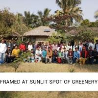 Framed at sunlit spot of greenery