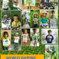 World Nature Conservation Day (14)